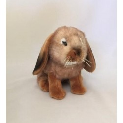 Rabbit Bunny Lop Eared Cinnamon by Bocchetta