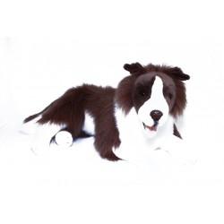 Border Collie Fudge Plush Toy by Bocchetta $7.95 Postage