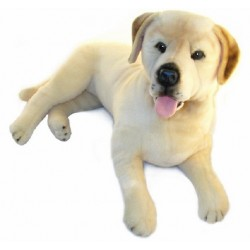 Yellow Labrador Beau stuffed plush toy by Bocchetta $7.95 Postage
