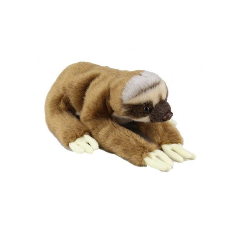 https://www.plushnstuff.com.au/1414-thickbox_default/baby-sloth-plush-stuffed-toy-by-national-geographic.jpg