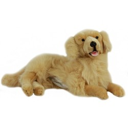 Golden Retriever Luna with satin pocket.  $7.95 Postage
