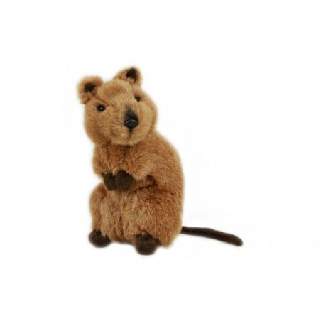 Quokka Edward Soft Toy by Bocchetta Plush Toys