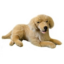 Golden Retriever Spencer by Bocchetta  $7.95 Postage
