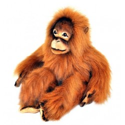 Orangutan Cha Cha soft toy by Bocchetta Plush Toys