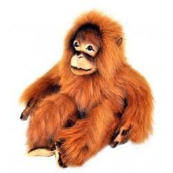 Orangutan Cha Cha soft toy...
