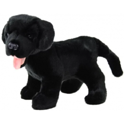 Black Labrador Sam 30cm by...