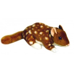Quoll Dotti plush toy by Bocchetta Plush Toys