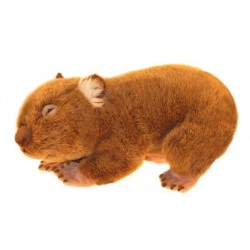 Wombat Georgina plush toy...