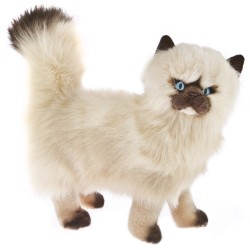 Himalayan Cat Primrose by Bocchetta Plush Toys