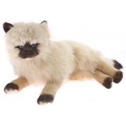 Himalayan Cat Violet by Bocchetta Plush Toys