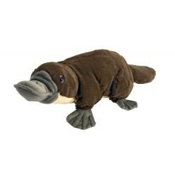 Platypus Cuddlekins stuffed toy by Wild Republic