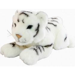 White Tiger Cub Sheba by Bocchetta