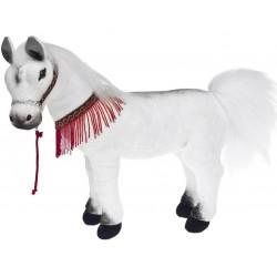White Arabian Horse Harlem...