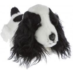 Cocker Spaniel Dog  Cleo...