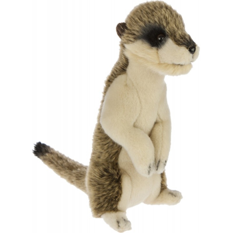 Meerkat Boris by Bocchetta