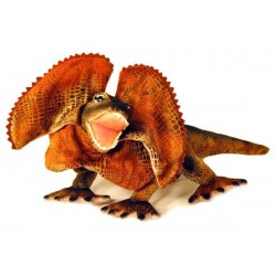 Frilled Neck Lizard Philly plush toy by Bocchetta Plush Toys