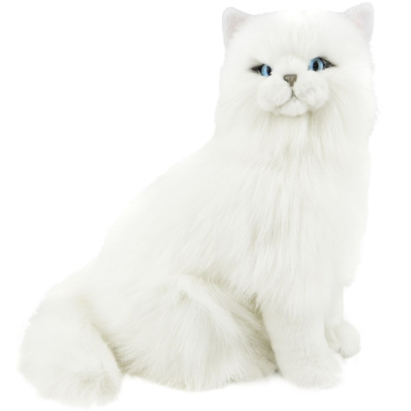 White Long Haired Cat Pearl by Bocchetta