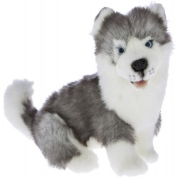 Siberian Husky Button by Bocchetta Plush Toys