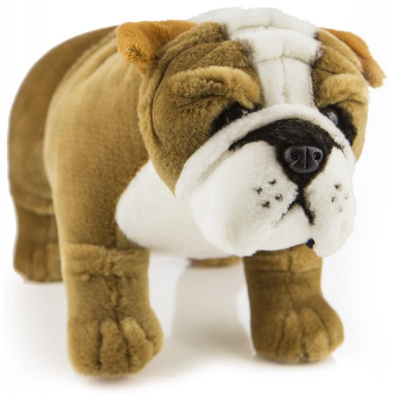 https://www.plushnstuff.com.au/870-thickbox_default/bulldog-baxter-by-bocchetta-plush-toys.jpg