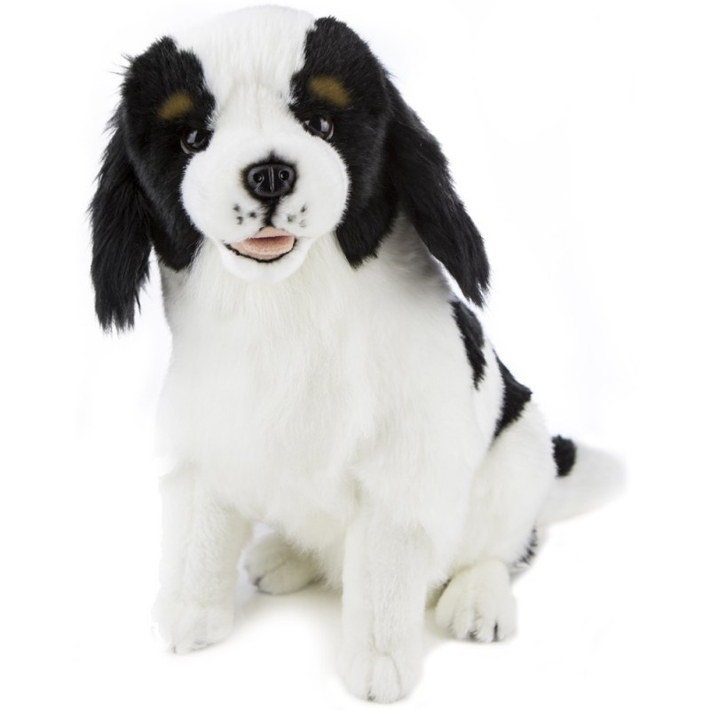 Cavalier King Charles Chester Plush Stuffed Toy Dog by Bocchetta Plush Toys