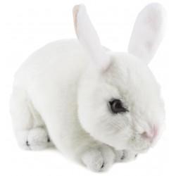 Bunny Rabbit Cotton by Bocchetta PlushToys
