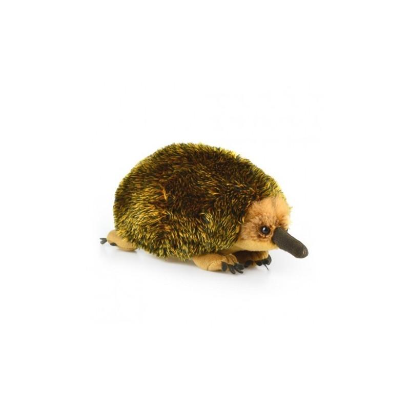 Echidna Eddie 30cm Plush Toy